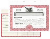 Blank LLC stock certificates. Easy to fill in the blanks from your software or hand write the information.
